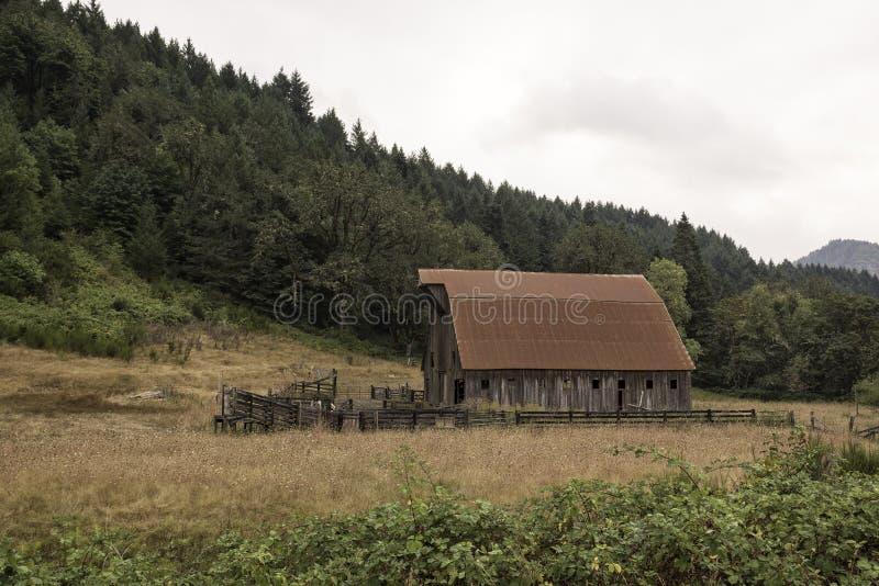 Oude schuur met rood dak in landelijk Oregon stock foto's