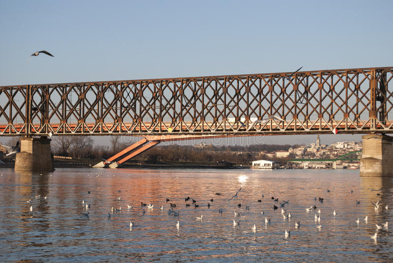 Oude spoorwegbrug in Belgrado stock foto