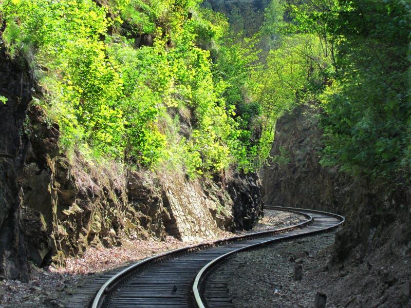 Oude spoorwegsporen in aard, die door trein reizen stock afbeeldingen