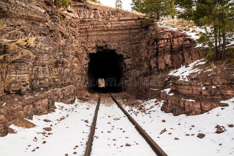 Oude Spoorwegtunnel stock afbeeldingen