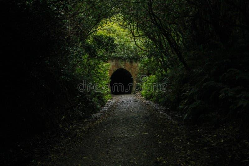 Oude Spoorwegtunnel in Nieuw Zeeland stock afbeeldingen