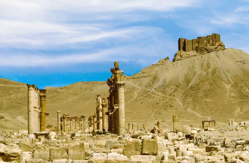 Oude stad van Palmyra royalty-vrije stock foto's
