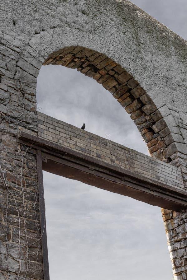Oude steenmuur met open overwelfde galerijen, ruïnes met zwarte vogel, doodsmetafoor stock foto's