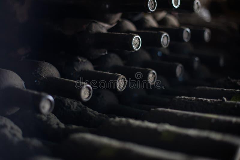 Oude stoffige wijnflessen in een donkere kelder stock foto