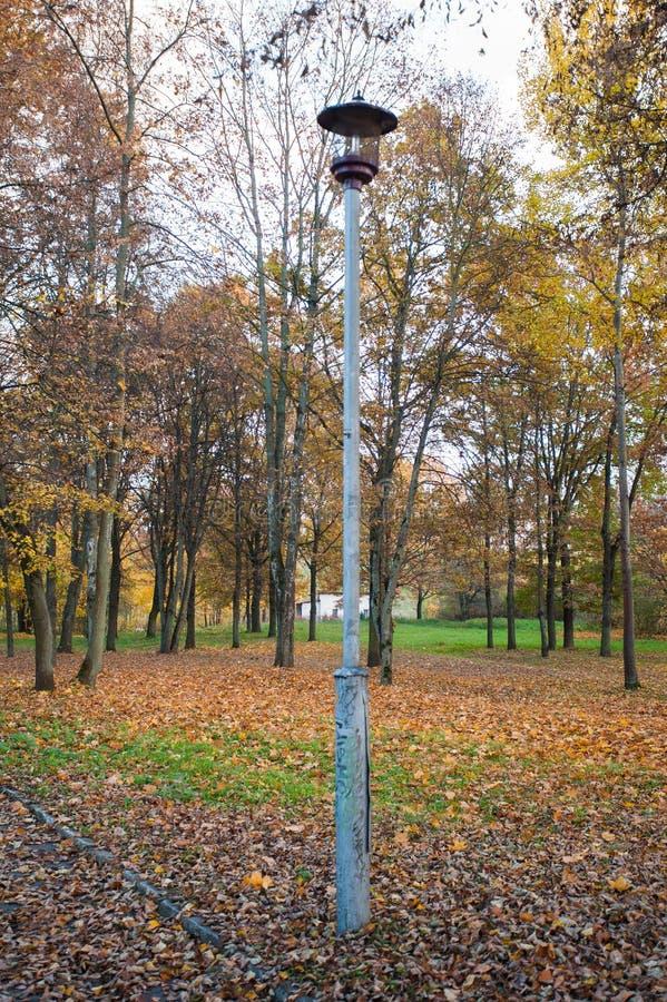 Oude straatlantaarn in de herfstpark Oude straatlantaarn in het park De heldere kleuren, boom met gele bladeren, stellen zwarte t stock fotografie
