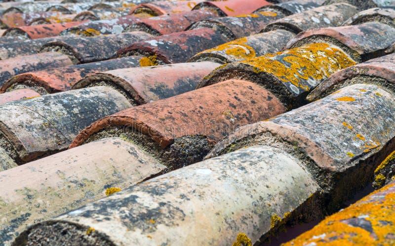 Oude tegels van een dak met mos stock fotografie