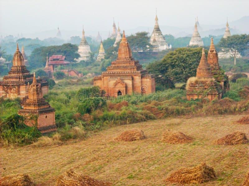 oude tempels in de mening van Vietnam van hierboven royalty-vrije stock foto