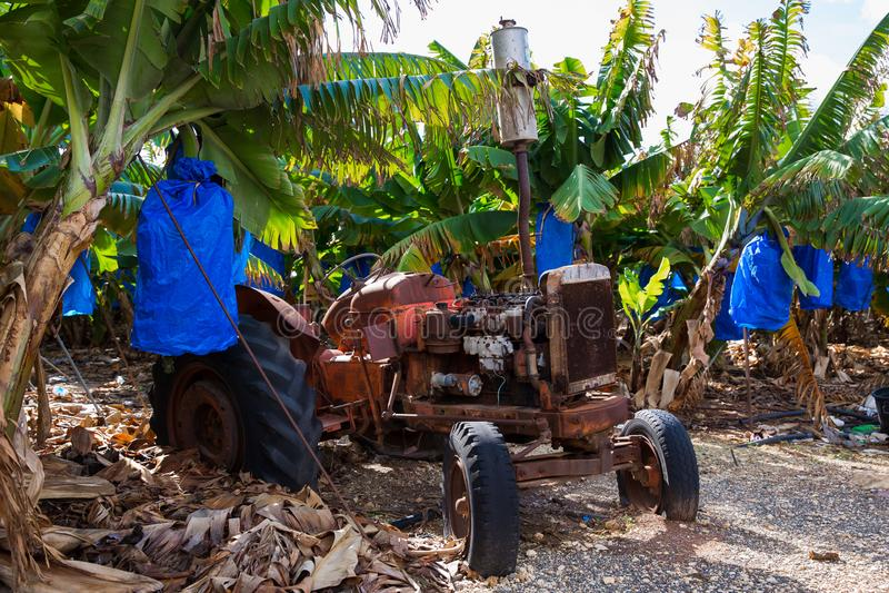 Oude tractor bij banannainstallatie Reisfoto 2018 Groen doorbladert royalty-vrije stock foto's