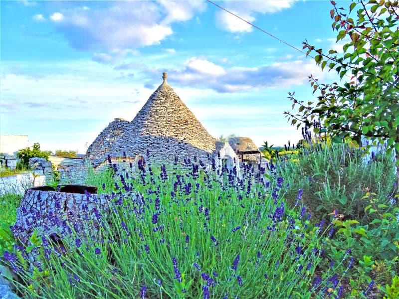 Oude Trulli, traditionele zeer oude huizen met lavendel en andere aromatische planten royalty-vrije stock foto's