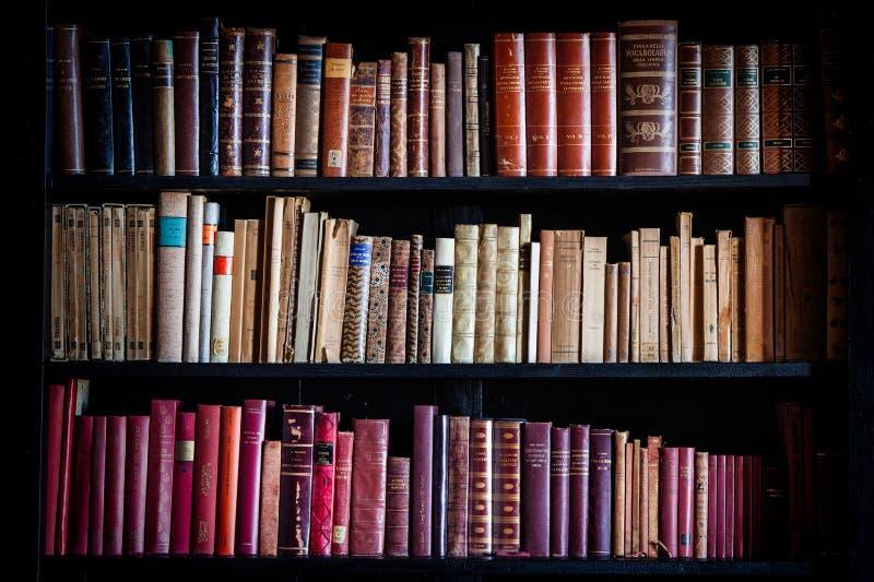 Oude uitstekende bibliotheekkennis Planken van historische boeken stock foto