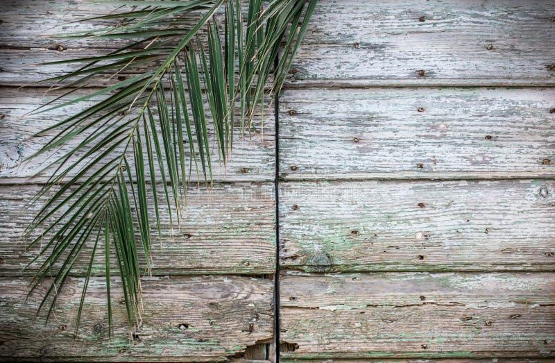 Oude uitstekende traditionele antieke houten deur en palmtak royalty-vrije stock afbeeldingen