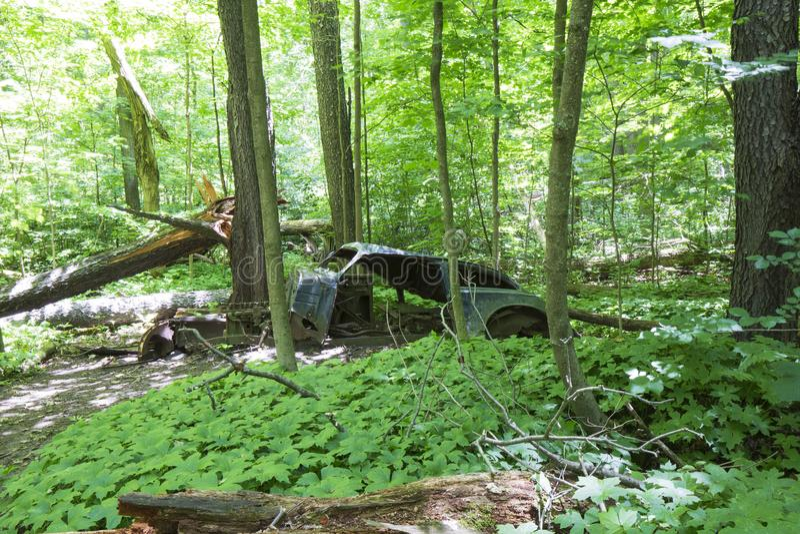 Oude verlaten auto in het bos royalty-vrije stock fotografie