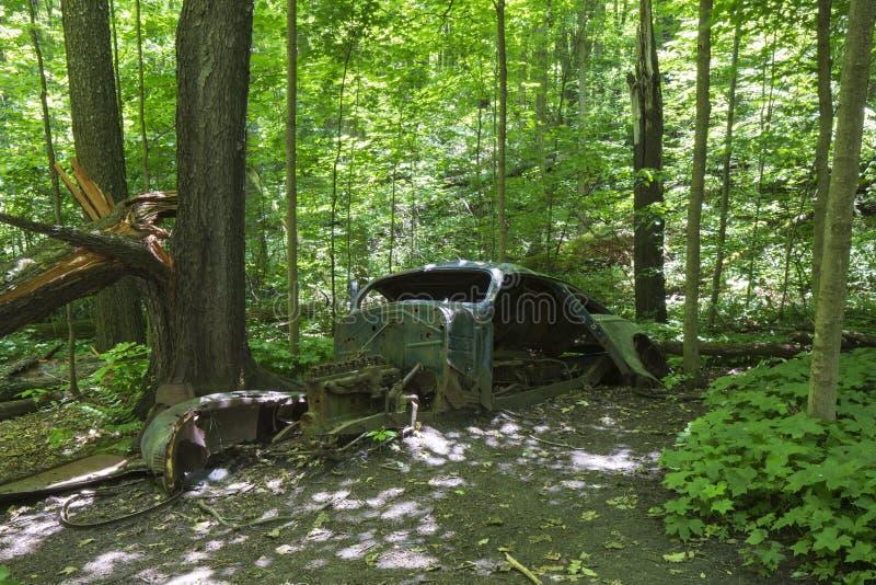 Oude verlaten auto in het bos royalty-vrije stock afbeeldingen