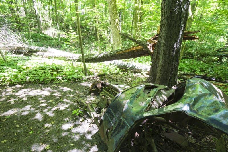 Oude verlaten auto in het bos stock fotografie
