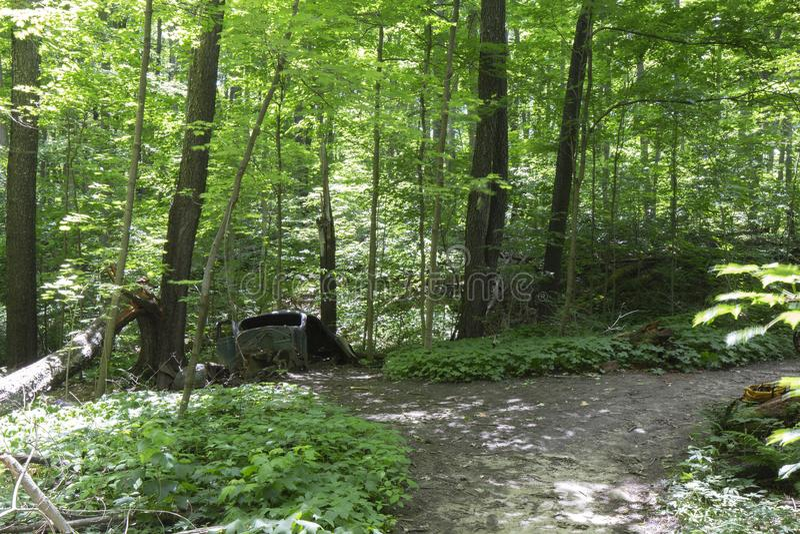 Oude verlaten auto in het bos stock foto's
