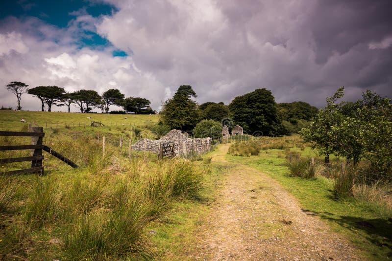 Oude Verlaten Graite Tin Mine bovenop Dartmoor in Engeland stock afbeeldingen