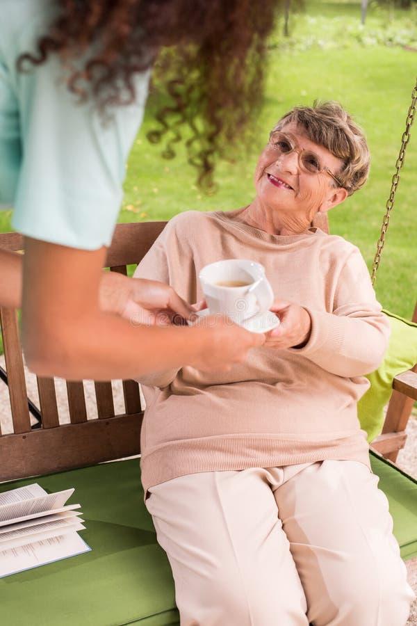 Oude vrouw in de tuin stock foto