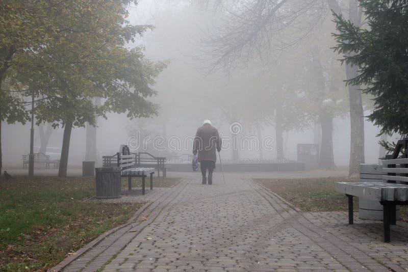 Oude vrouw die door het park op een mistige dag in de herfst lopen royalty-vrije stock afbeelding