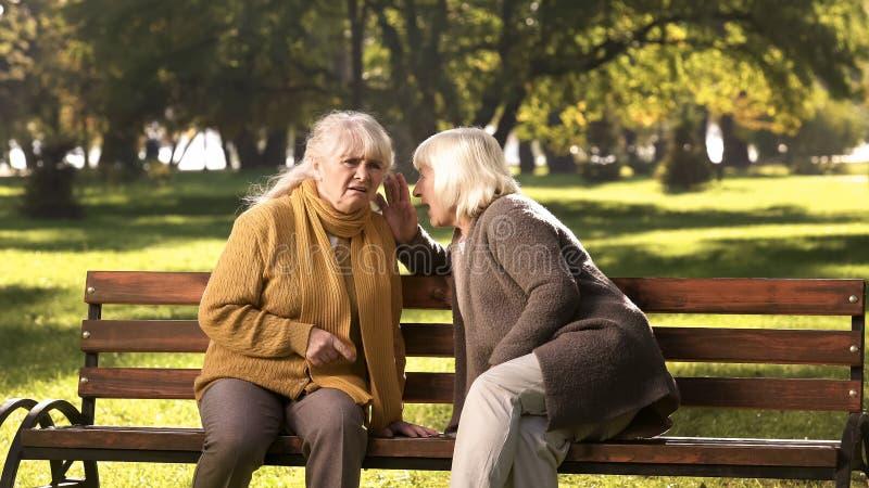 Oude vrouwen die geheimen vertellen, die op bank in park, vriendschap, gouden jaren zitten stock afbeelding