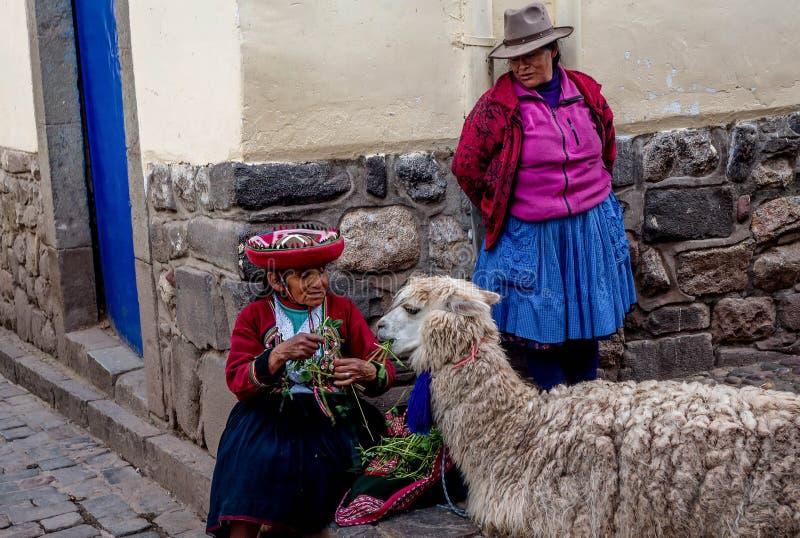 Oude Vrouwen in traditionele kleding het voeden Alpaca in Pisac, Peru royalty-vrije stock afbeelding