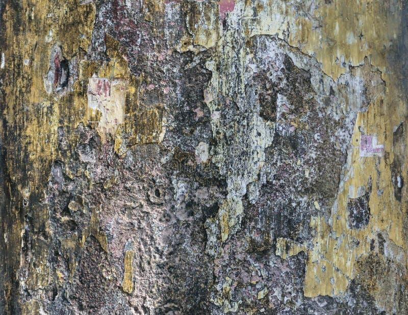 Oude vuile muur met mos royalty-vrije stock afbeelding