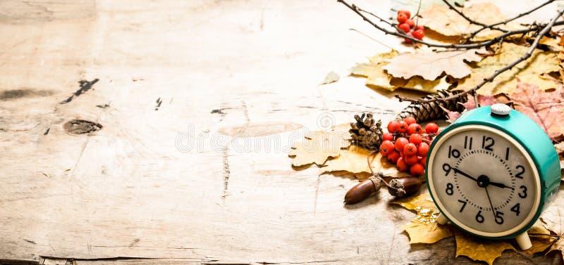 Oude wekker met de herfstbladeren, kegels en bessen stock afbeelding