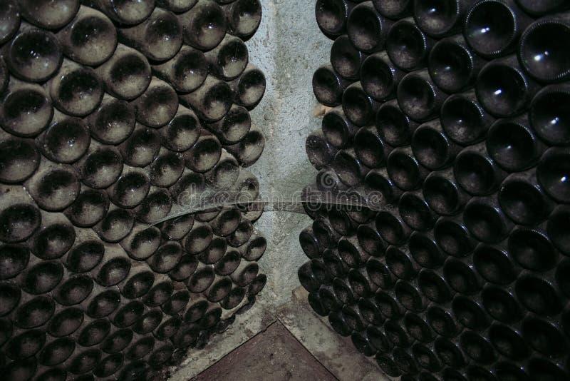 Oude wijnflessen die in wijnkelder leggen royalty-vrije stock fotografie