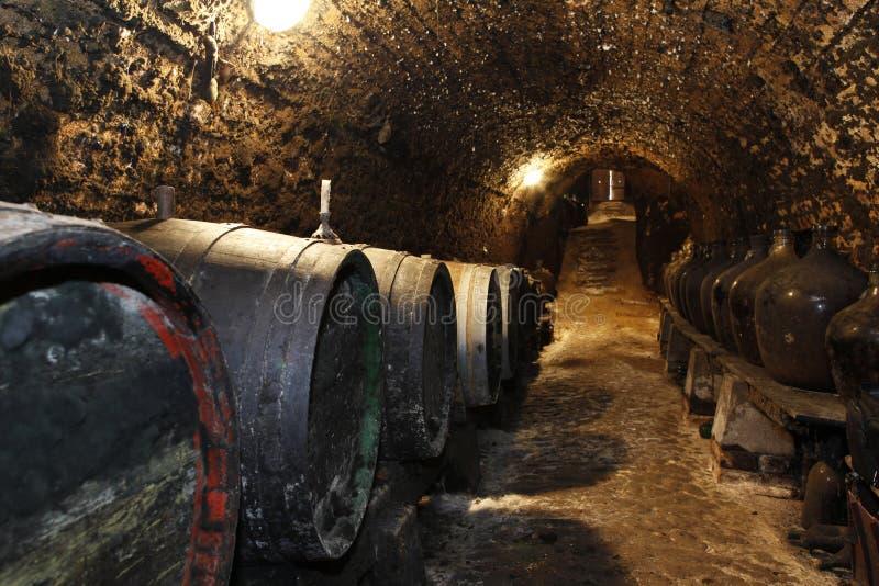 Oude wijnvatten in de kelder stock afbeeldingen