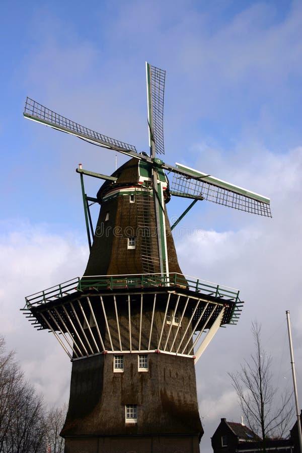 Oude Windmolen, Stock Foto