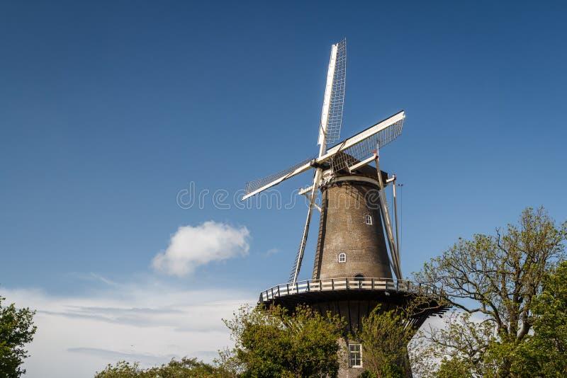 Oude windmolen in het historische centrum van Leiden stock foto's