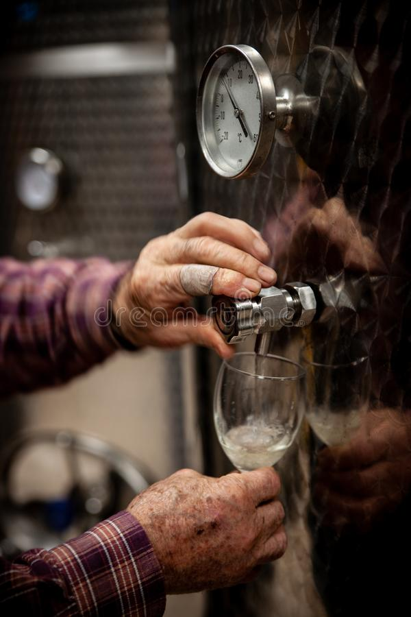 Oude winemakershanden die een glas wijn van moderne inox Ta gieten stock fotografie