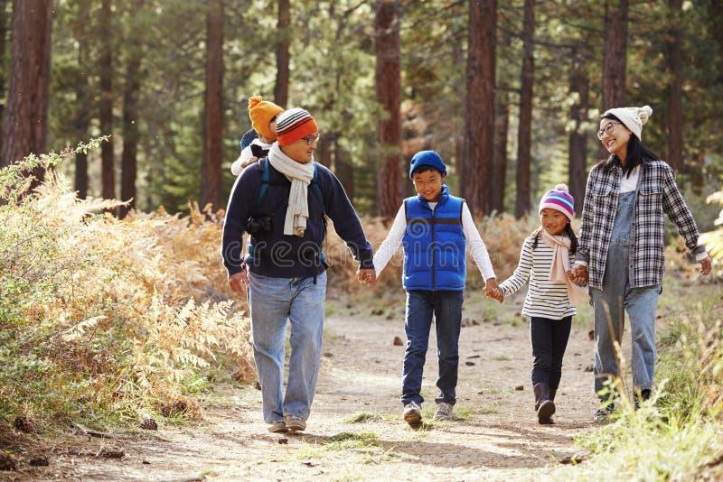 Ouders en drie kinderen die in een bos, vooraanzicht lopen royalty-vrije stock afbeeldingen