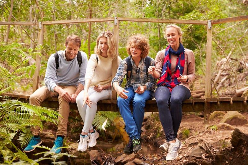Ouders en tienerjaren spelen, die op een brug in een bos zitten stock fotografie