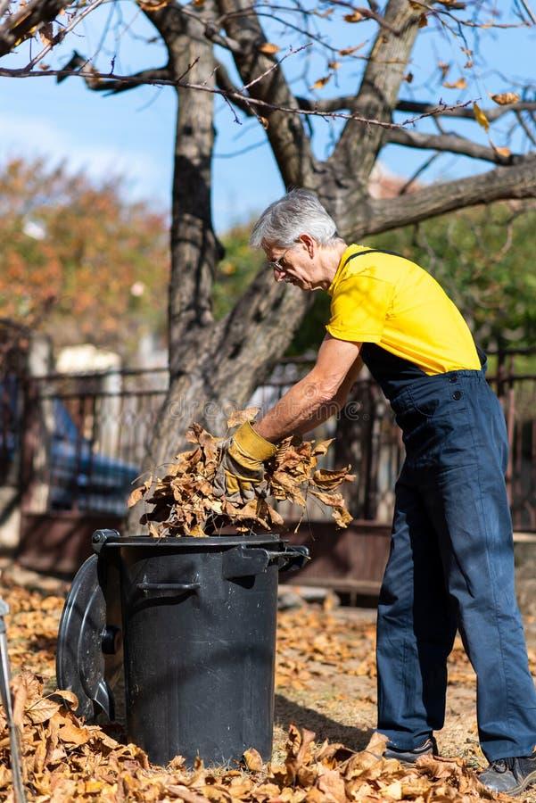 Oudste die gevallen de herfstbladeren in de yard verzamelen royalty-vrije stock afbeeldingen