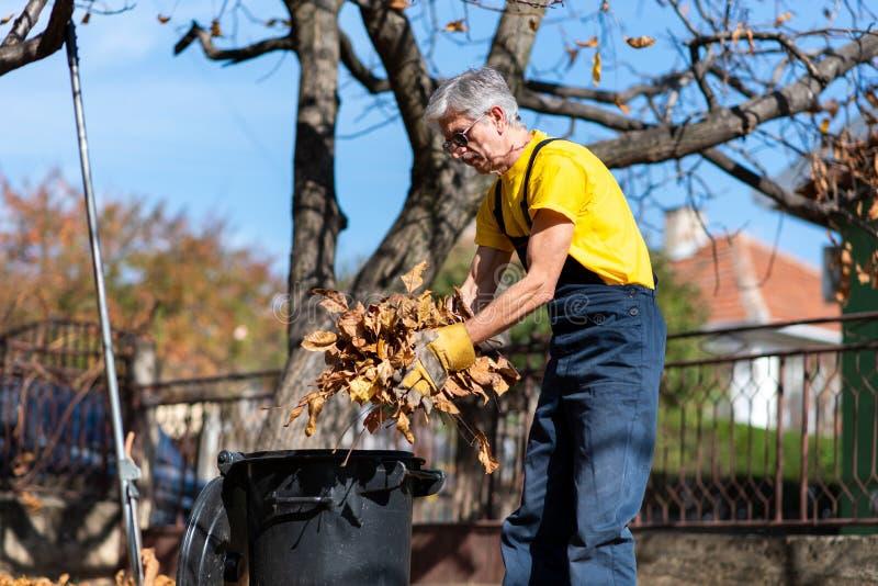 Oudste die gevallen de herfstbladeren in de yard verzamelt royalty-vrije stock fotografie