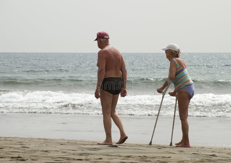 Oudsten op het strand stock foto