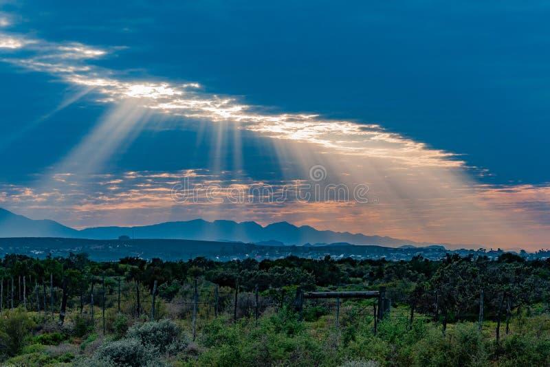 Oudtshoorn västra udde Sydafrika royaltyfria foton