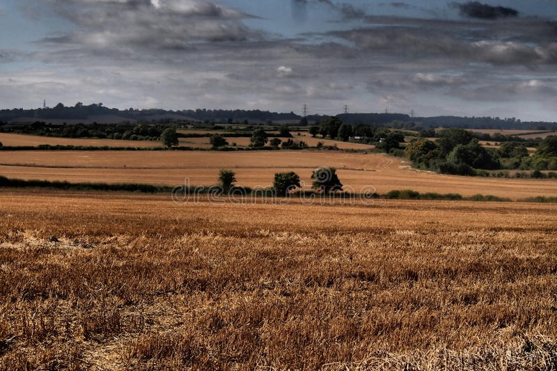 Oughtonhead Common fields stock photography