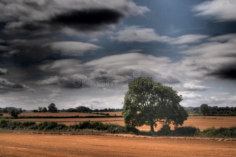 Oughtonhead Common fields royalty free stock photos