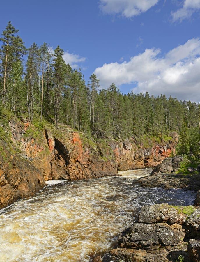 Oulankajoki rzeka zdjęcie royalty free