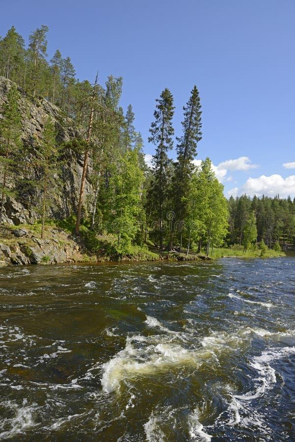 Oulankajoki rzeka zdjęcia royalty free