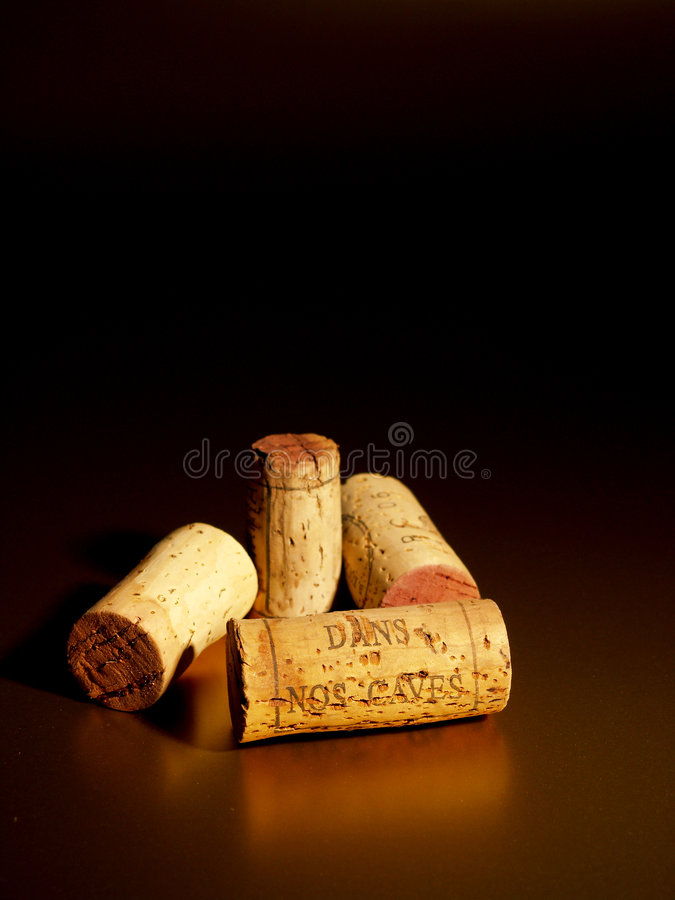 In our cellars royalty free stock photo