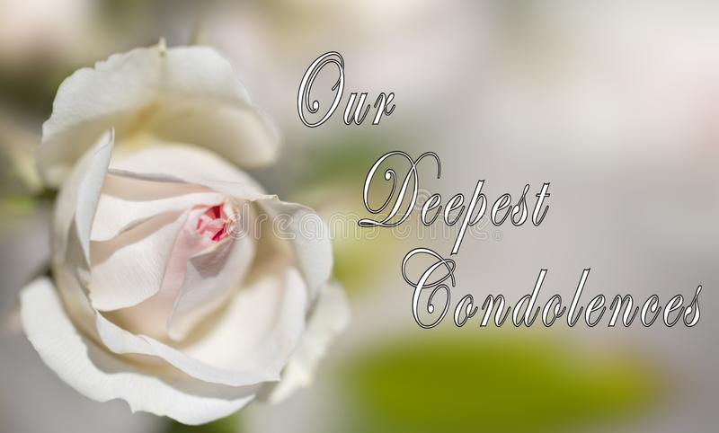 Our Deepest Condolences Card - Designed for someone mourning the death of the loved one. One on creamy background stock image