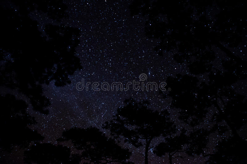 our stars stock images