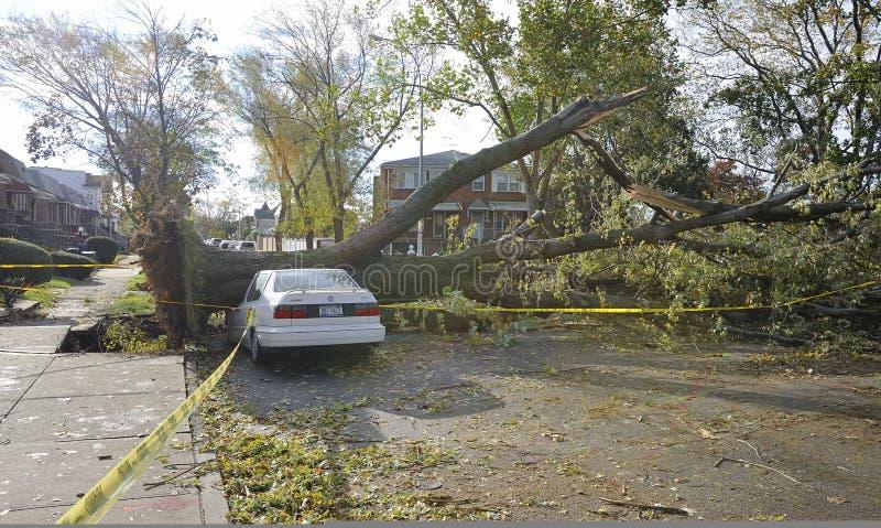 Ouragan Sandy photos stock