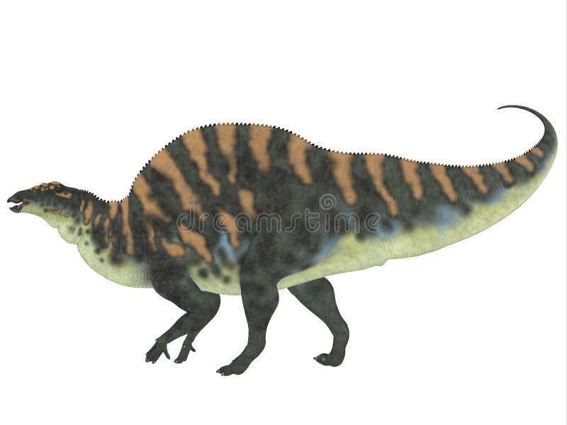 Ouranosaurussidoprofil vektor illustrationer