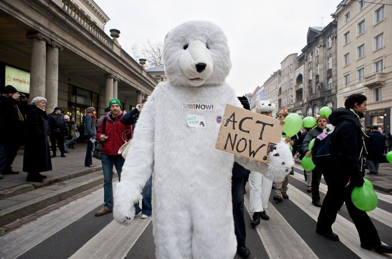 Ours blanc   images libres de droits