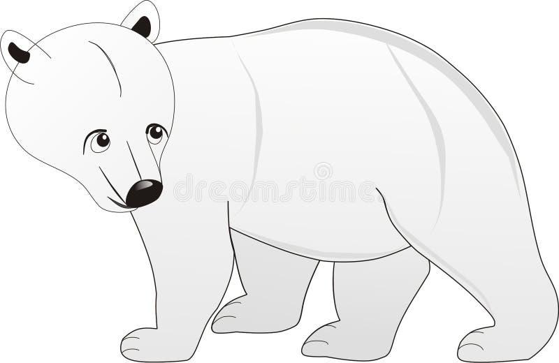 Ours blanc simple de marche de couleur photo stock