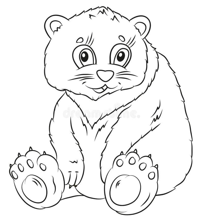 Ours, coloration, l'image de l'animal en noir et blanc illustration de vecteur