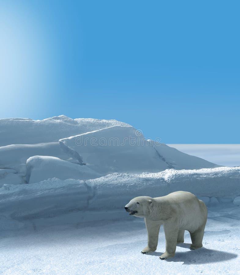 Ours de glace chassant la région arctique polaire image libre de droits